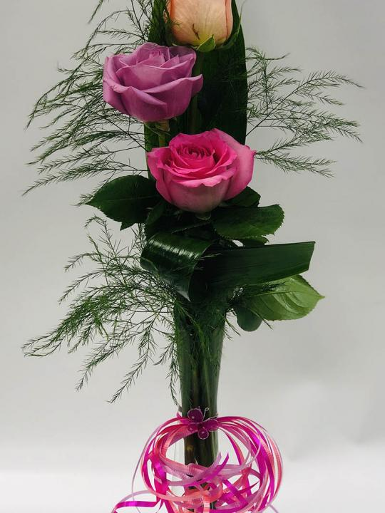 Arrangement de 3 roses en cello FM007B