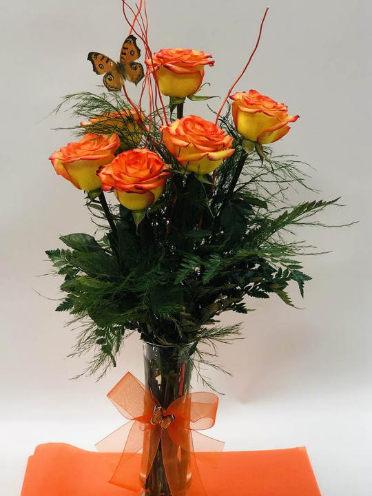 Arrangement de 6 roses en cello FM008B